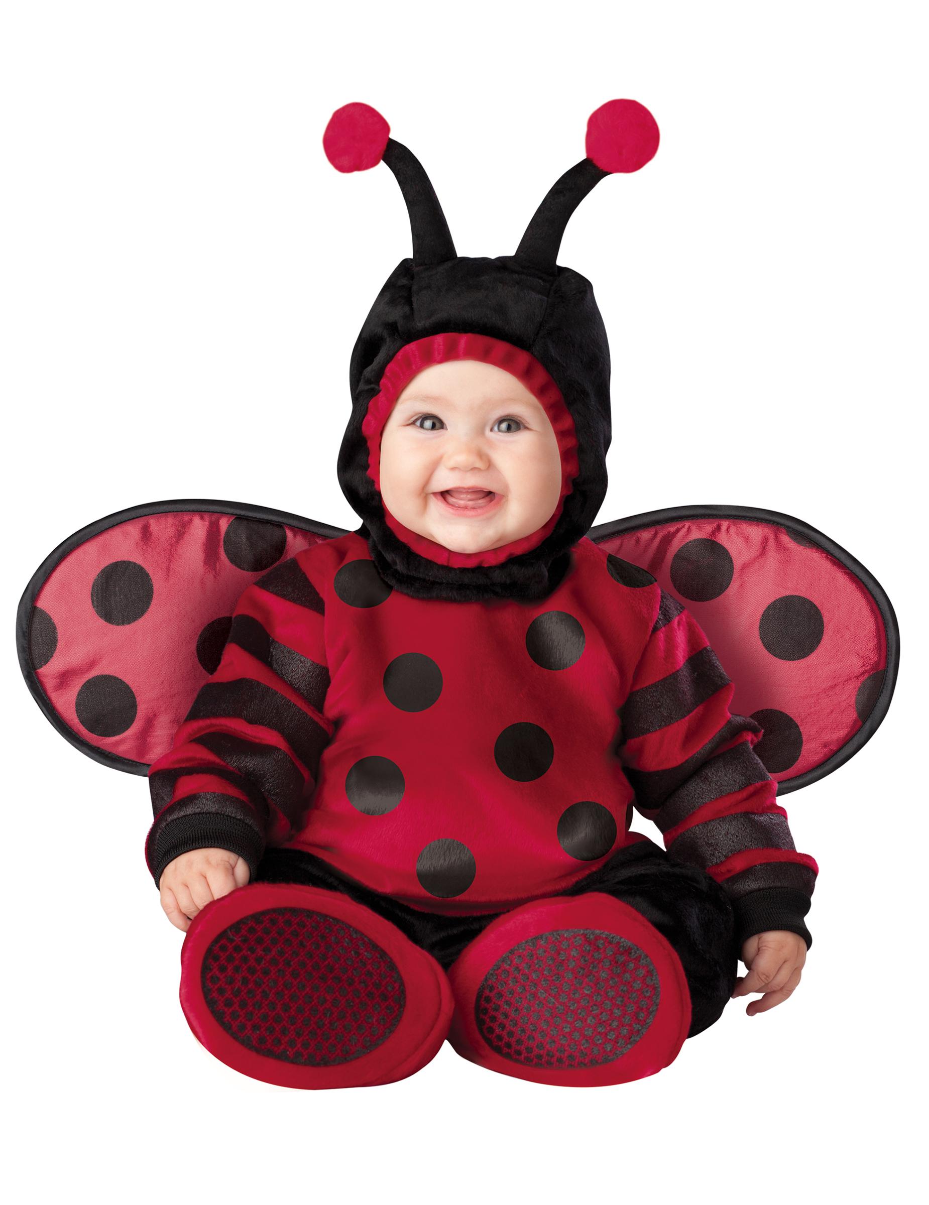 Disfarce Premium de joaninha para bébé  Disfarces Crianças ... 439d0aea89d