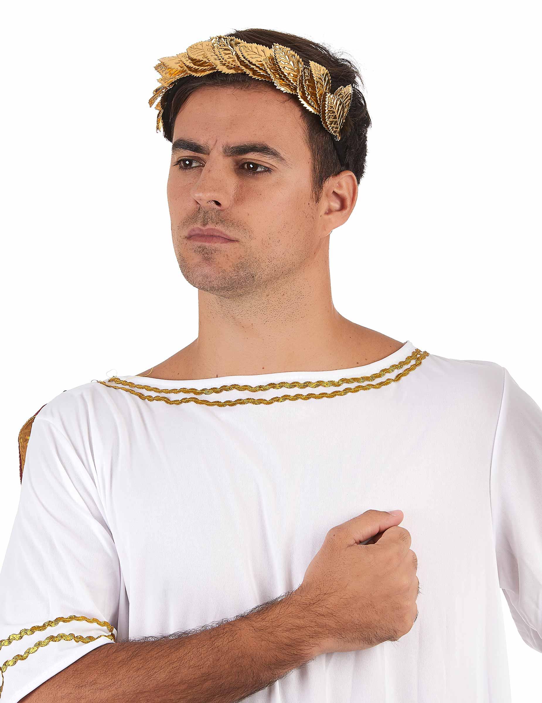 e80c37371 Tiara coroa de folha de loro dourada - adulto: Acessórios ...