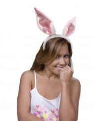 Orelhas de coelho para adulto