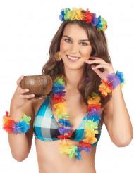 Conjunto Havai mulher
