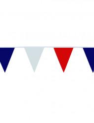 Festão de apoiante bandeirola tricolor