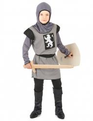 Disfarce de cavaleiro para rapaz