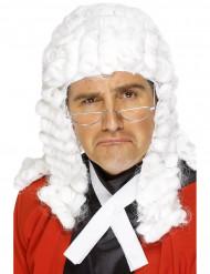 Peruca juiz luxo homem