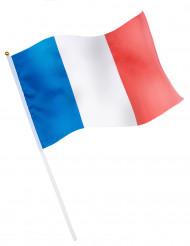 Bandeira de torcedor - França