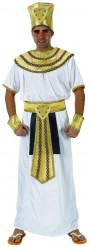 Disfarce de rei egípcio homem