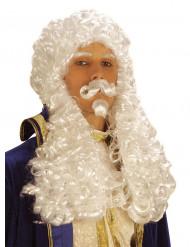 Peruca branca de Francisco 1º homem