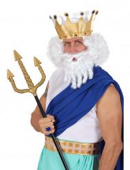 Peruca branca de deus do Olimpo para homem
