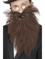 Barba comprida castanha homem