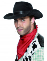 Chapéu de Cowboy preto