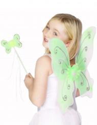 Kit borboleta verde para menina
