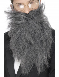 Barba comprida grisalha para homem