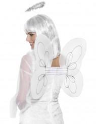 Asas brancas de anjo adulto