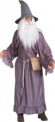 Fantasia de Gandalf de O Senhor dos Anéis™ para adulto
