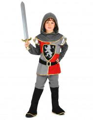 Disfarce de cavaleiro do renascimento rapaz