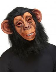 Máscara de macaco adulto