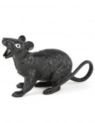 Rato Halloween