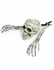 Decoração esqueleto