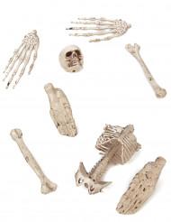 Saco de ossos de decoração