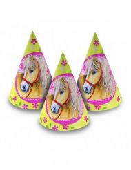 6 chapéus com cavalos