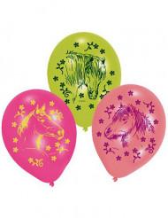 6 Balões de cavalos