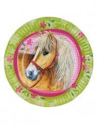 8 Pratos de cartão Cavalos