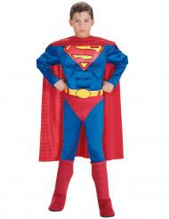 Disfarce Superman™ musculoso criança