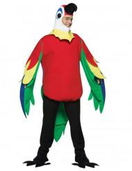 Disfarce papagaio para adulto