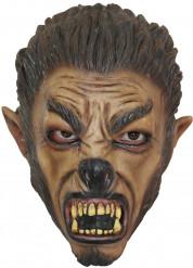 Máscara de lobo criança Halloween