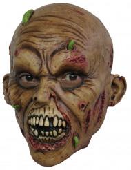 Máscara zombie adulto de Halloween