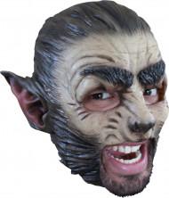 Máscara lobo adulto Halloween