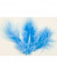 20 plumas de decorações azuis
