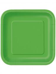 14 Pratos grandes verdes de cartão
