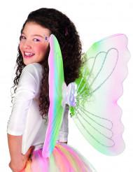 Asas de borboleta para adulto