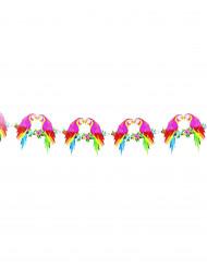 Grinalda papagaio havaí