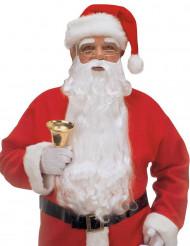 Grande barba Pai Natal adutlo
