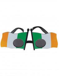 Óculos bandeira Irlanda adulto