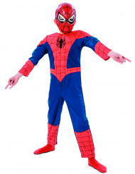 Disfarce Ultimate Spider-man™ 3D menino