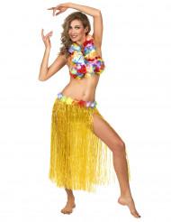 Saia havaiana amarela adulto