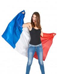 Capa-bandeira França