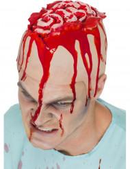 Falso cérebro sangrento adulto