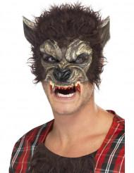 Semi máscara homem lobo adulto