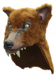 Máscara lobo castanho adulto