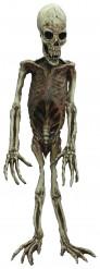 Decoração esqueleto de macaco Halloween