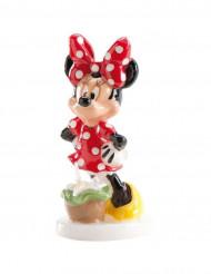 Vela Minnie™