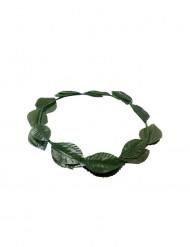 Coroa de loureiro verde adulto