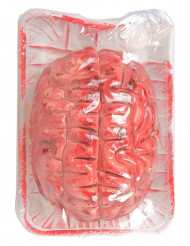 Cérebro sangrento Halloween