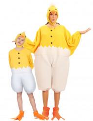 Disfarce dueto pintainho pais e filhos