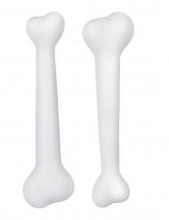 Kit de 2 ossos pré-históricos