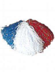 Pompom adepto França