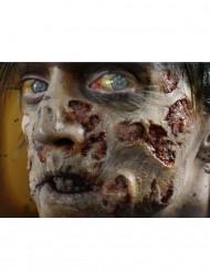 Feridas apodrecimento zombie Premium